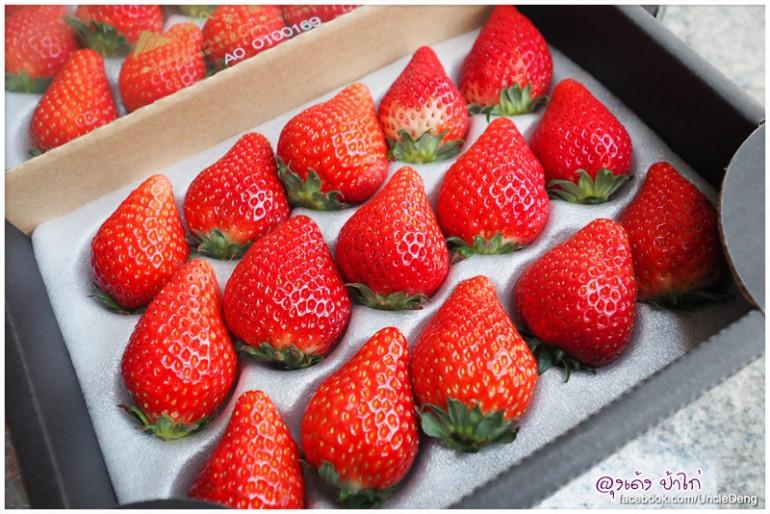 ameyoko_market_10