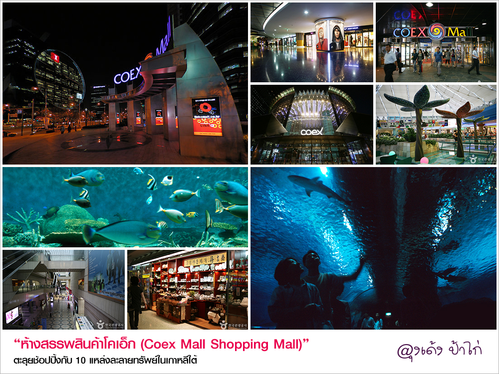 09_coexmall_shoppingmall