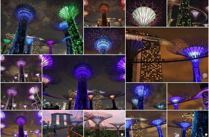 การแสดง แสง สี เสียง OCBC Light and Sound Show ที่ Gardens By The Bay (ชมฟรี)
