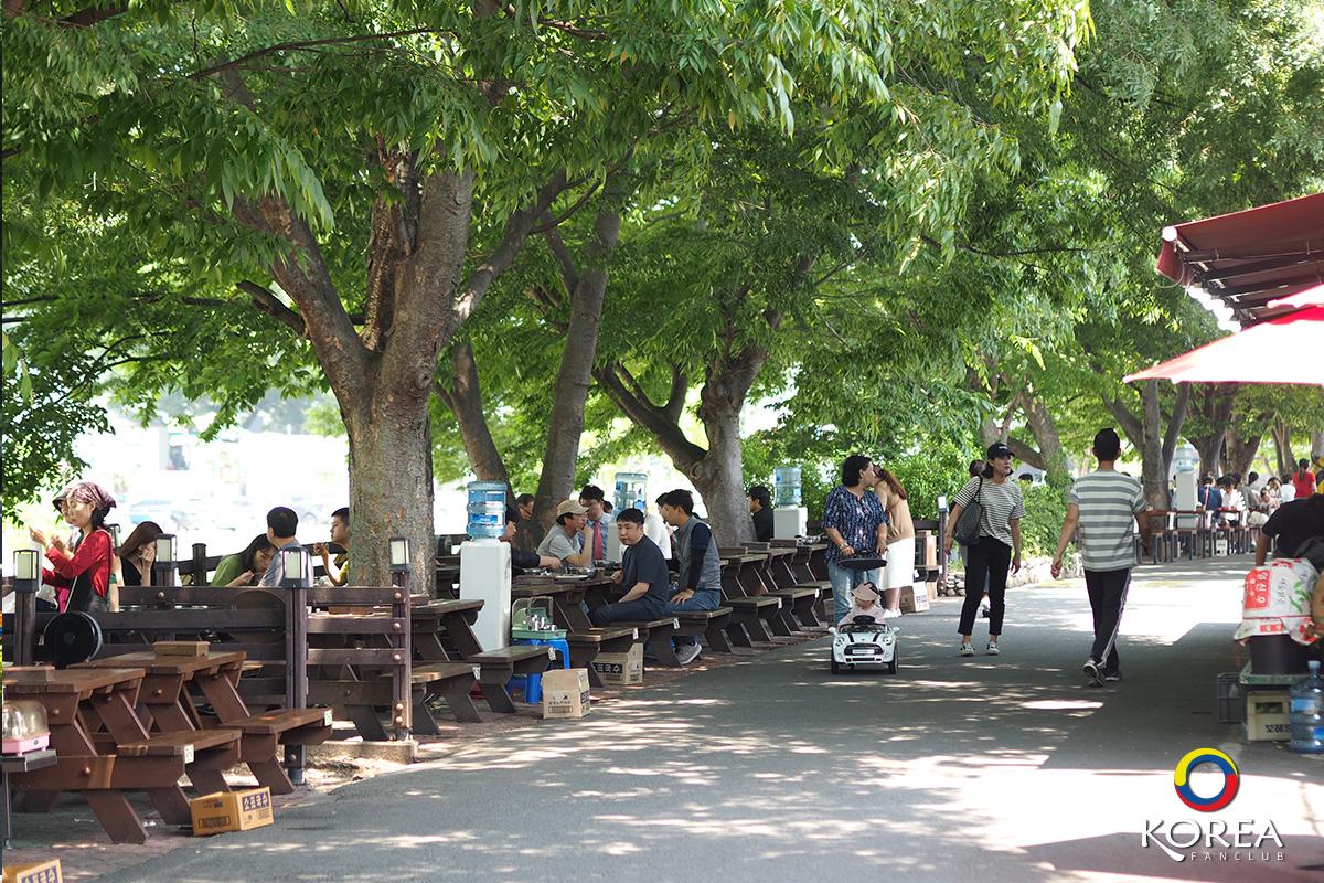 Damyang Noodle Street