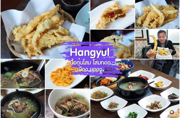 Hangyul โสมทอด เมือง ยองจู