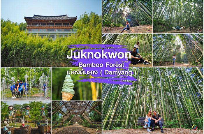 สวนป่าไผ่ Juknokwon Bamboo Garden