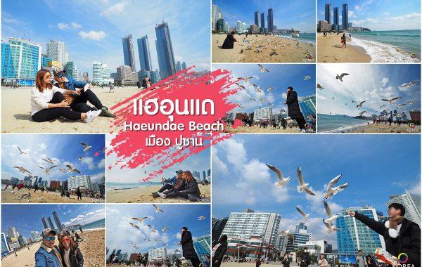 ชายหาด แฮอุนแด ปูซาน