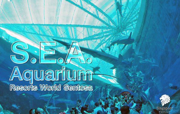S.E.A Aquarium Sentosa สิงคโปร์
