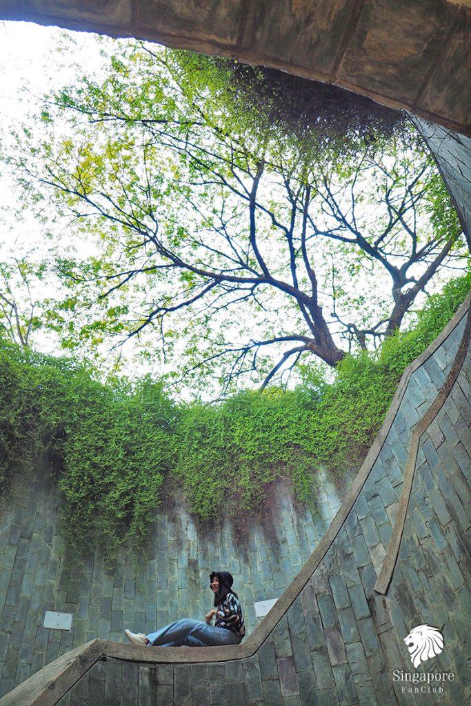 อุโมงค์ต้นไม้ สิงคโปร์